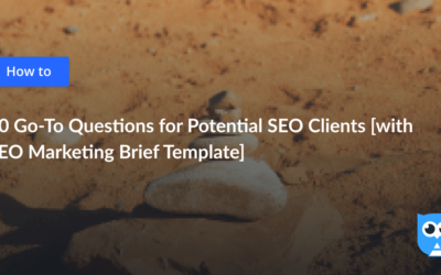 [Template Inside] What Questions to Ask Potential SEO Clients