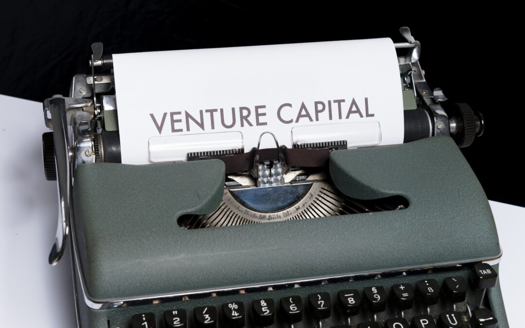 Are you building your startup for the customer or a VC?